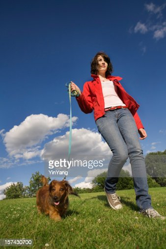 Teenager, Woman Walking Leashed Dachshund Dog Pet on Park Lawn : Stock Photo