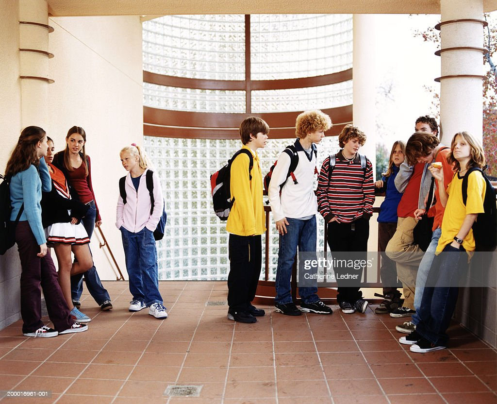 Teenagers (14-16) hanging out in school : Stock Photo