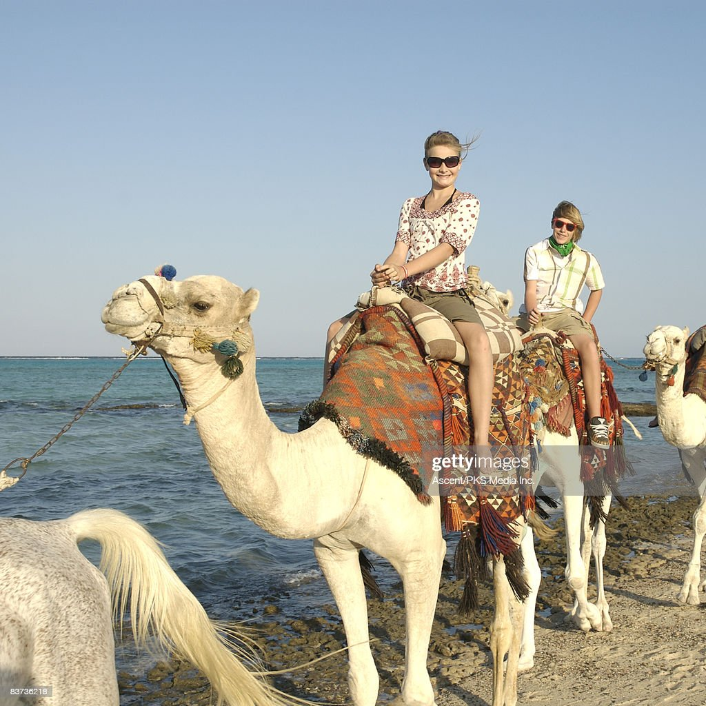 Teenagers ride camels along edge of sea : Stock Photo