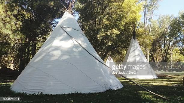 Teepee Tent On Grassy Field At Park
