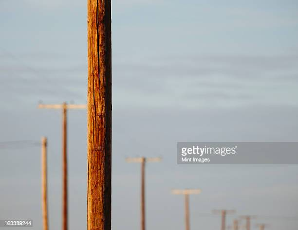 Telephone poles and power lines in a row, at Belridge in California.