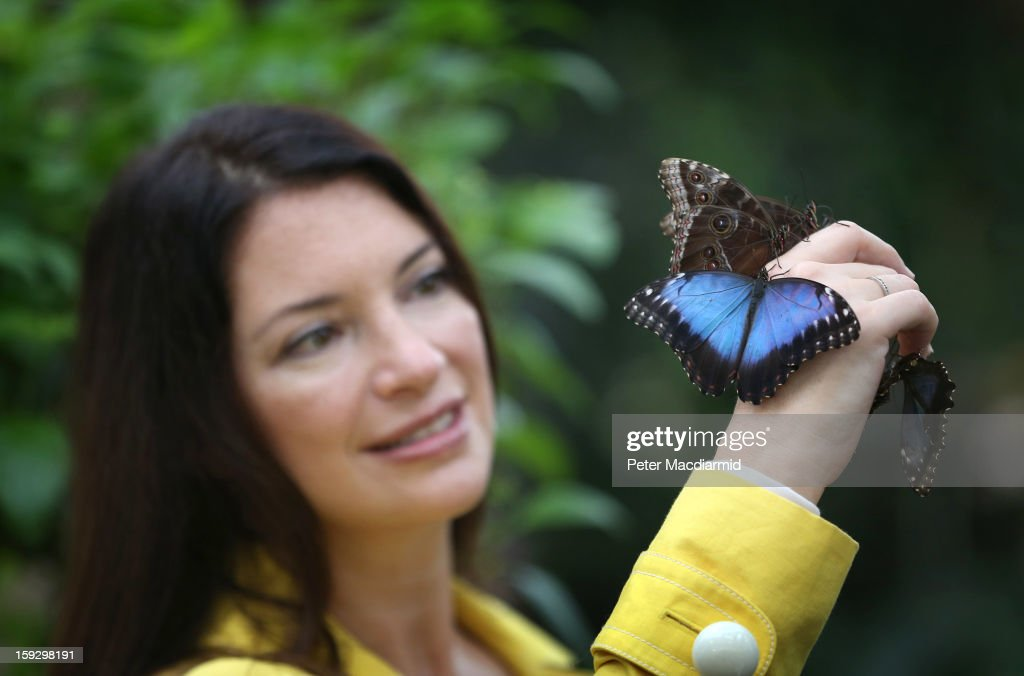 Television gardener Rachel de Thame holds butterflies in The Glasshouse at RHS Wisley Gardens on January 11, 2013 near Woking, England. Rare and exotic butterflies have been placed in The Glasshouse for visitors from January 12 to February 24, 2013.