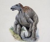 Telmatosaurus transsylvanicus Hadrosauridae Late Cretaceous Illustration