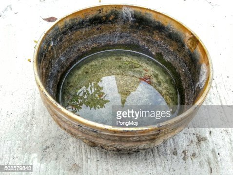 Temple in Bowl Reflections : Stockfoto
