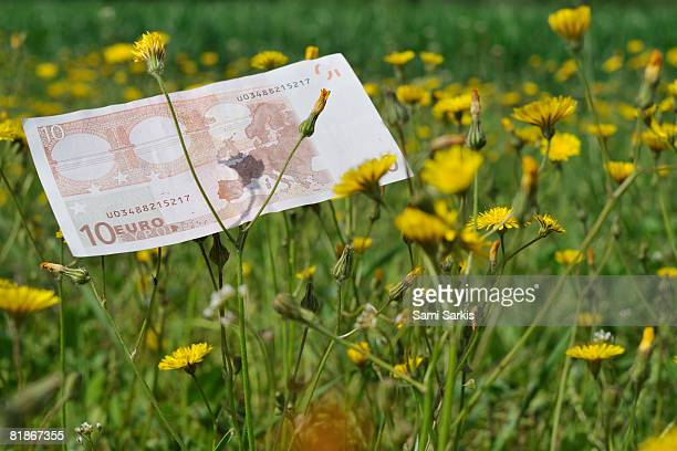 Ten Euros banknote on grass
