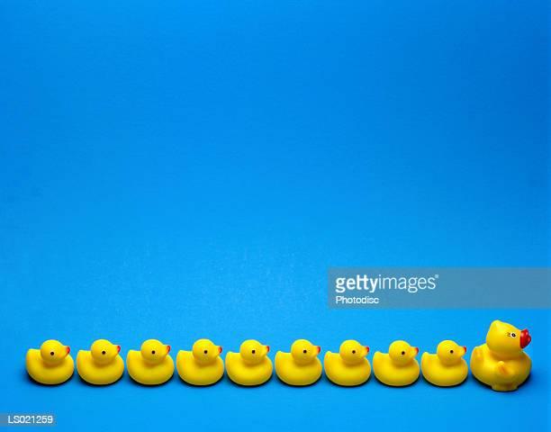 Ten Rubber Ducks