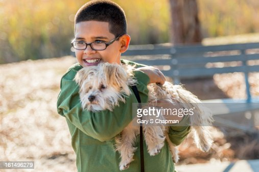 Ten year old boy with a pet Morkie breed dog : Stock Photo