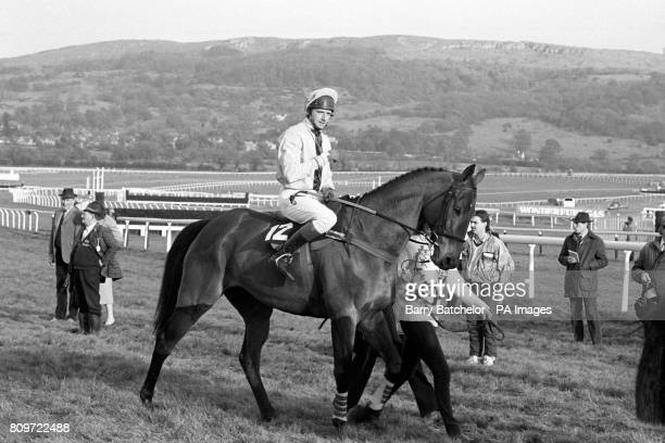 Ten years old bay Gelding 'Warner for Leisure' pictured being ridden by Jockey Mark Richards Owned by Terry Warner Sports the horse is trained in...