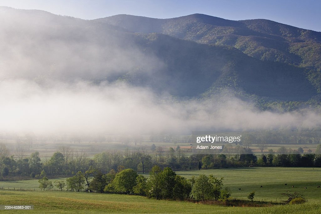 USA, Tennessee, Great Smoky Mountains National Park, fog over valley