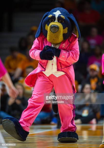 Tennessee Lady Volunteers mascot Smokey in his pink tuxedo at the 'Live Pink Bleed Orange' breast cancer awareness game between the LSU Tigers and...