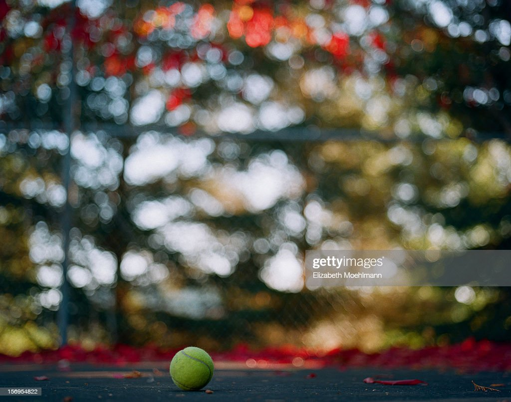 Tennis ball on court : Stock Photo