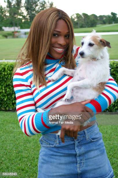 Tennis Player Serena Williams photographed with her dogs a Staffordshire named Bambi and a Jack Russell named Jackie on May 31 2005 at her home in...