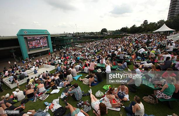 Tennis spectators on the lawn watch the Gentlemen's Singles second round match between Andy Murray of Great Britain and Ivo Karlovic of Croatia on...