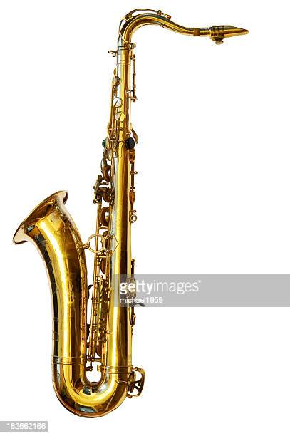 Tenor Saxophone (Path included)