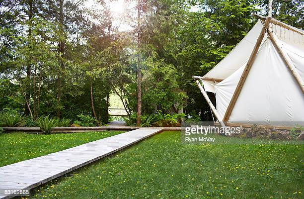 Tent and boardwalk amidst grass.