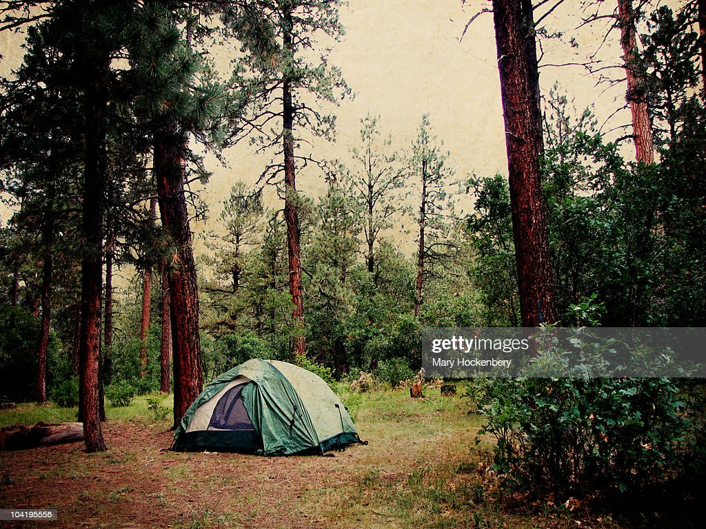 Tent camping in the Rocky Mountains : Stock Photo