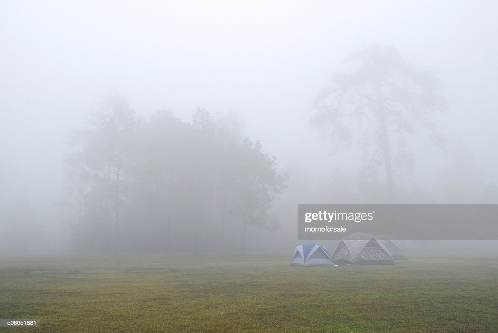 Tent in the fog. : Stock Photo