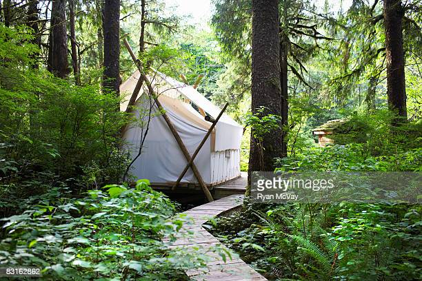 Tent in the forest.