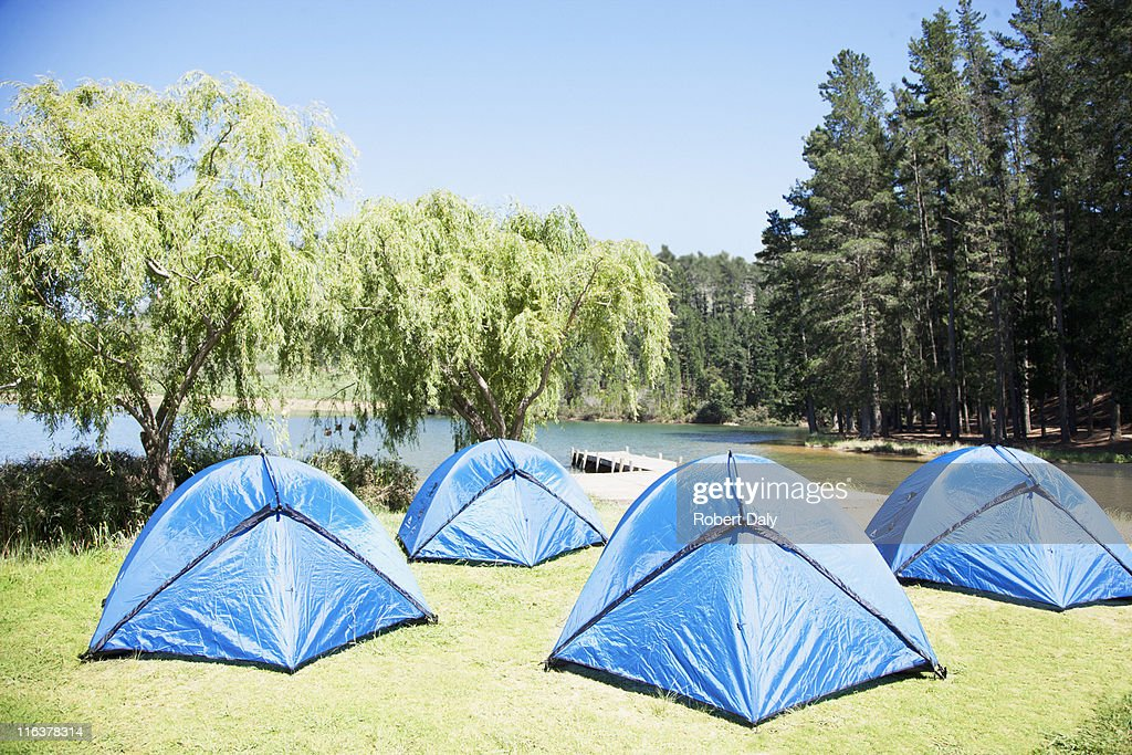 Tents on grass at lakeside : Stock Photo