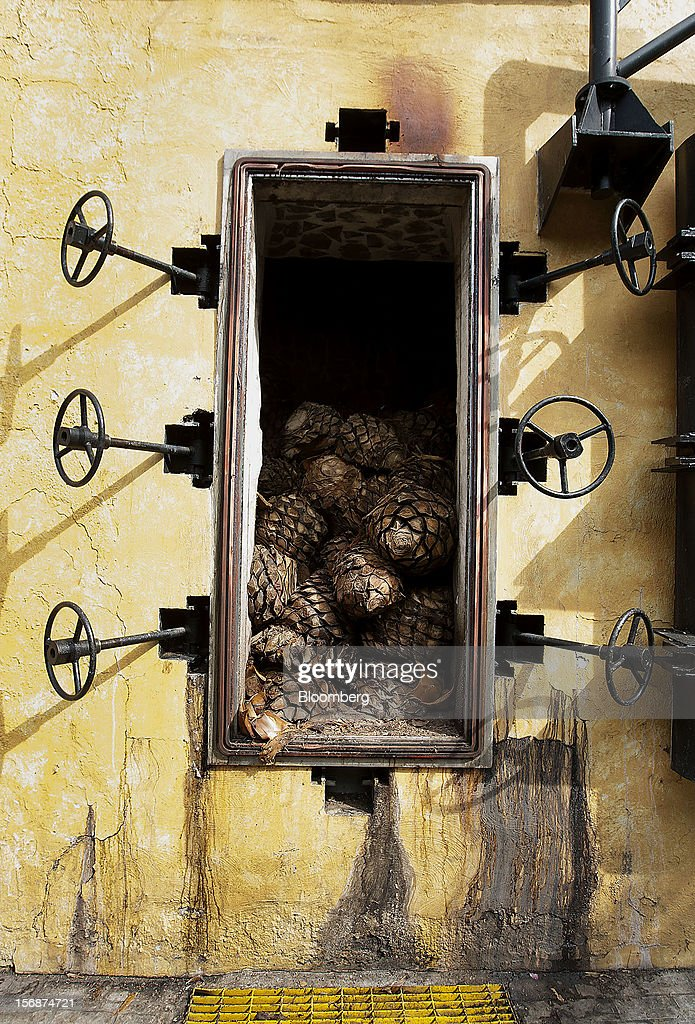 Tequila agave plant cores, also known as blue agave, sit in an oven at the Tequila Cuervo La Rojena S.A. de C.V., maker of Jose Cuervo, distillery plant in Guadalajara, Mexico, on Thursday, Nov. 22 2012. There are more than 200 types of agave in Mexico, but use of the blue agave plant was made compulsory in the last century to the issuance of the Official Mexican Standard for Tequila production. Photographer: Susana Gonzalez/Bloomberg via Getty Images