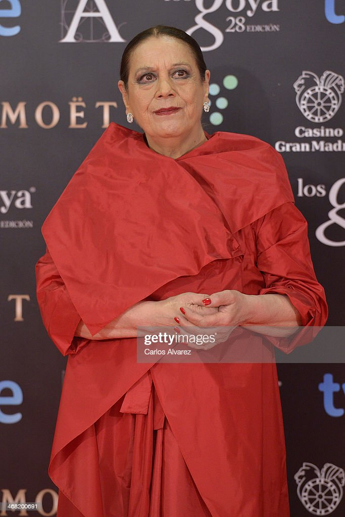 Terele Pavez attends Goya Cinema Awards 2014 at Centro de Congresos Principe Felipe on February 9, 2014 in Madrid, Spain.