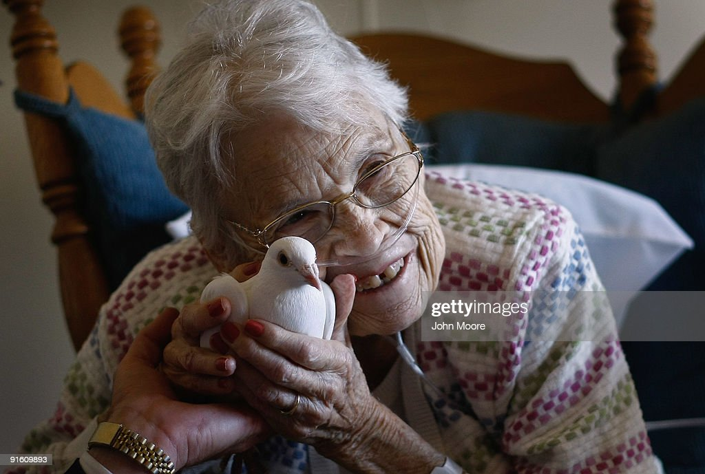 Terminally ill patient Evelyn Dafoe, 83, caresses a dove on October 7, 2009 at the Hospice of Saint John in Lakewood, Colorado. The dove visits are part of an animal therapy program designed to increase happiness, decrease loneliness and calm terminally ill patients during the last stage of life. The non-profit hospice accepts patients regardless of their ability to pay, although most are covered by Medicare or Medicaid. End of life care has become a contentious issue in the current national debate on health care reform.