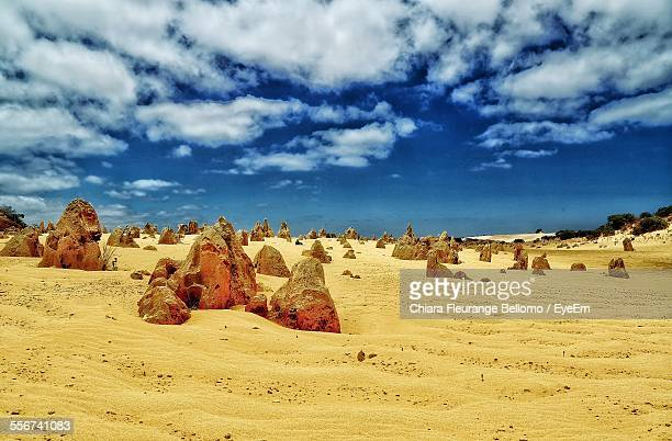 Termite Mounds On Sand