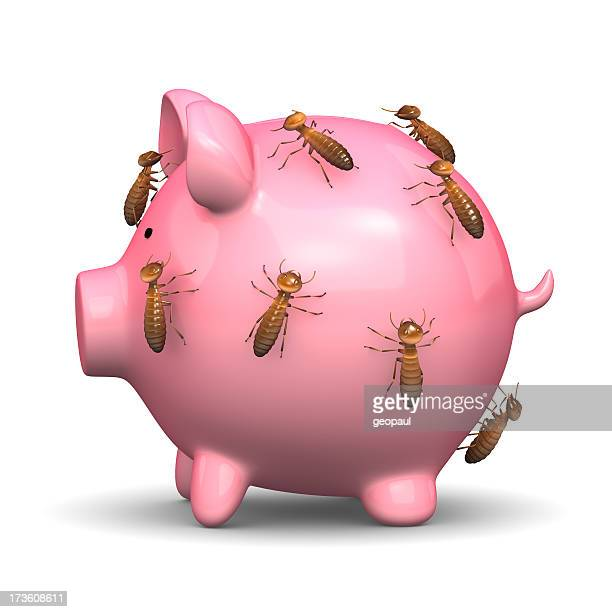 Termites on your savings