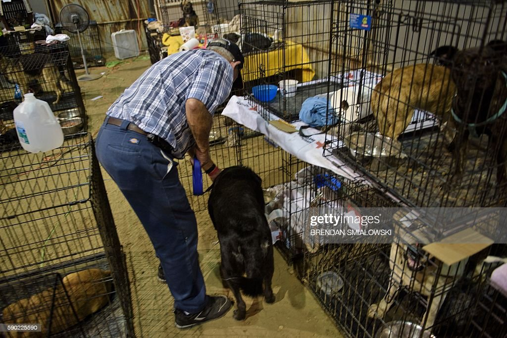 Teroy Kelley puts his dog Jennifer back into a cage at a temporary animal shelter at the Lamar Dixon Expo Center near a flood victims' shelter after...