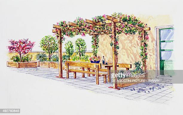 Terrace with pergola illustration