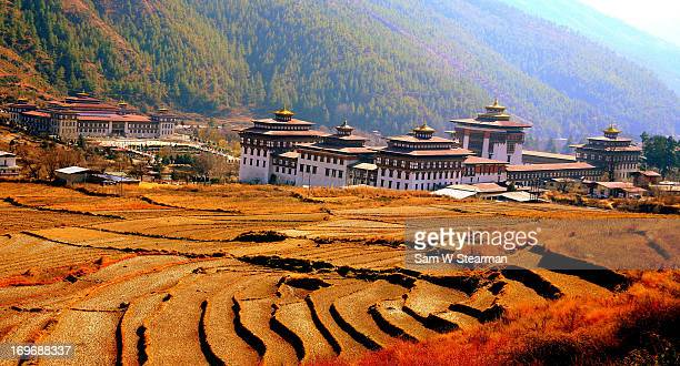 Terraced Fields and Government Buildings - Thimphu