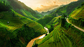 Terraced rice field landscape near Sapa in Vietnam. Mu Cang Chai Rice Terrace Fields stretching across the mountainside, layer by layer reaching up as endless, with about 2,200 hectares of rice terrac