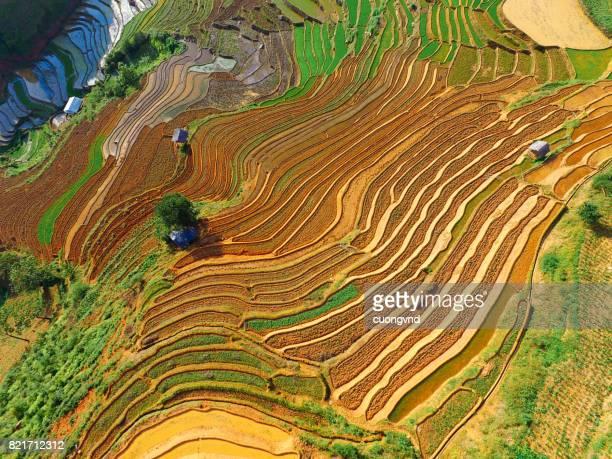 Terraced rice field in water season from above