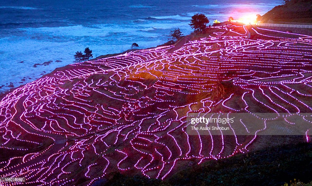 Terraced rice paddies of Shiroyone Senmaida glowing with twenty thousand solar powered pink LED lights, to be recorded in the World Guinness Record Book on November 10, 2012 in wajima, Ishikawa, Japan. The terrace paddies were registered Globally Important Agricultural Heritage Systems (GIAHS) last year.