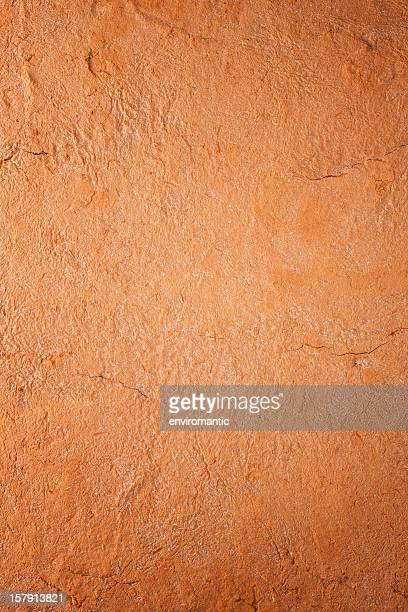 Terracotta background.