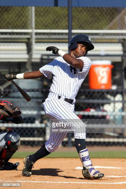 Terrance Robertson of the Yankees at bat during the Gulf Coast League game between the Braves and the Yankees on August 19 at the New York Yankees...