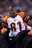 Terrell Owens of the Cincinnati Bengals looks on from the bench during the game against the New York Jets on November 25 2010 at the New Meadowlands...