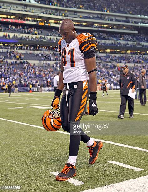 Terrell Owens of the Cincinnati Bengals walks off of the field following the Bengals 2317 loss to the Indianapolis Colts in the NFL game at Lucas Oil...