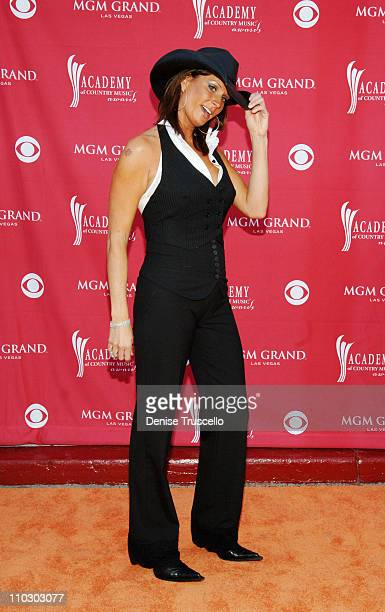 Terri Clark during 42nd Academy of Country Music Awards Red Carpet at The MGM Grand Hotel and Casino Resort in Las Vegas Nevada