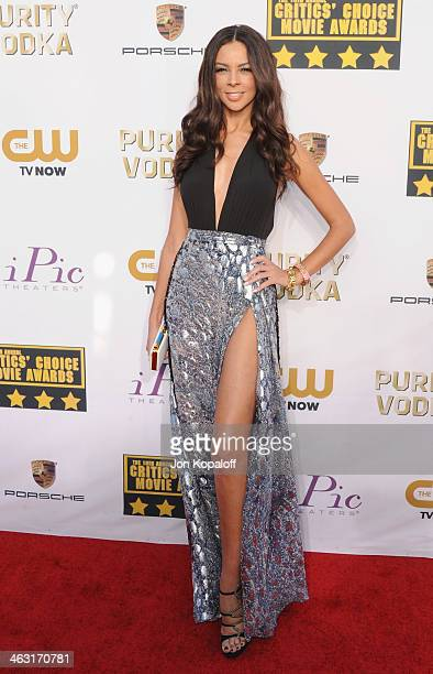 Terri Seymour arrives at the 19th Annual Critics' Choice Movie Awards at Barker Hangar on January 16 2014 in Santa Monica California