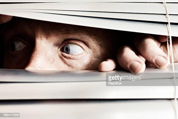 Verängstigt Mann sieht seitlich durch abdunkelbare Jalousien