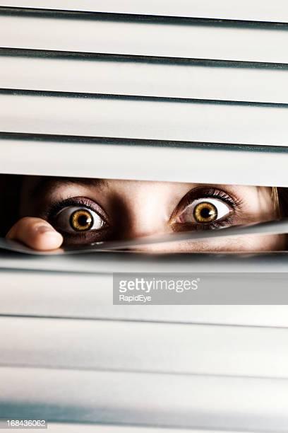 Terrified woman peeps through slats of blind, wide eyed