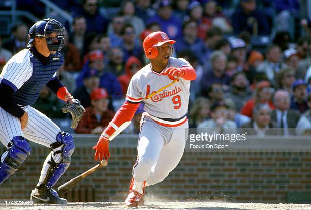 Terry Pendleton of the St Louis Cardinals bats against the Chicago Cubs during an Major League Baseball game circa 1986 at Wrigley Field in Chicago...