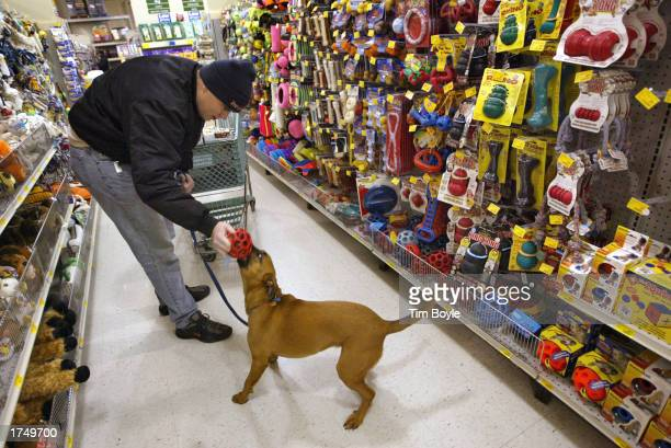 Terry Teahan and his dog Ceili play as they shop at a Petsmart store January 28 2003 in Niles Illinois Through December 3 Petsmart Inc sales were $20...