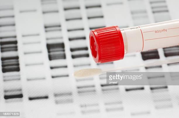 Test d'ADN