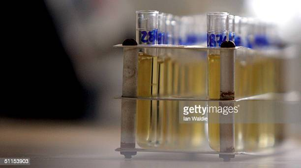 Test tubes containing liquid are seen at the Doping Control Laboratory of Athens during the final days before the start of the 2004 Olympic Games...