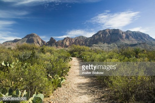 big bend national park muslim dating site View free background profile for eliseo del campo (del) he lives in big bend national park dating websites.