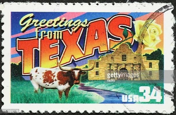 Texas longhorn and the Alamo