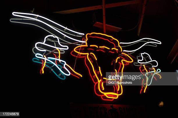 Texas Longhorn Neon Sign
