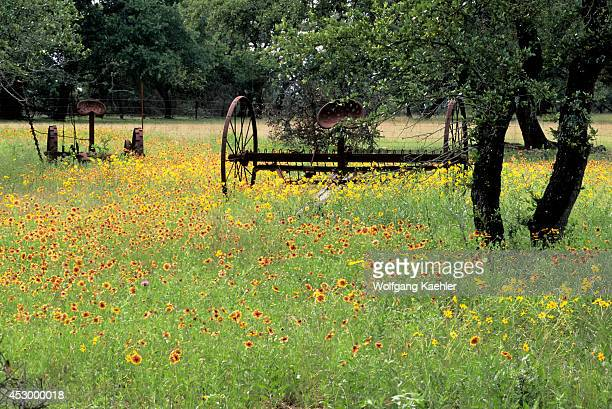 USA Texas Near Austin Highway 290 Old Farm Equipment With Indian Blanket Flowers
